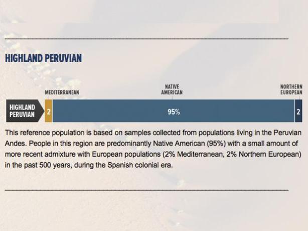 Composición genética de los sudamericanos.