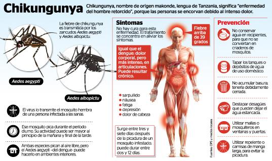 chikungunya-alerta