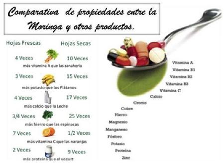 comparativa-de-propiedades-entre-la-moringa-y-otros-productos